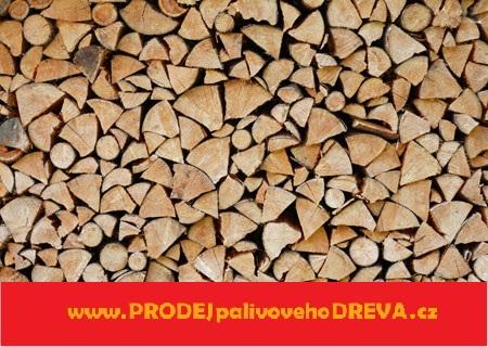 Nejlepší dřevo do krbu
